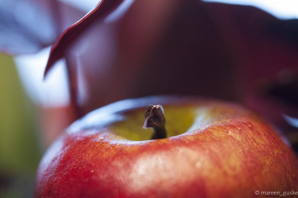 Apfel Makro